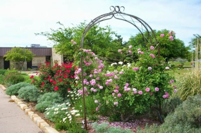 Weatherford Public Library Literary Garden